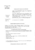 Conseil municipal 11-07-2017